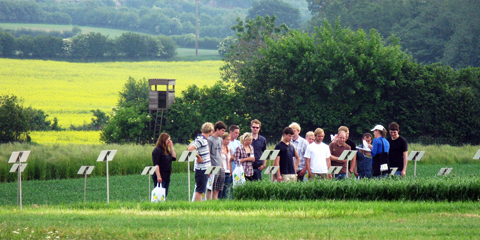 Studierende während einer Exkursion